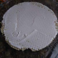Yogurt Cream Layer